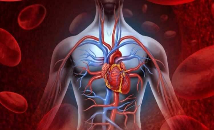 جراحی عروق قلب